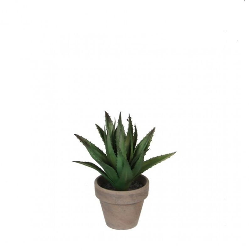 Aloe Vera artificiala in ghiveci