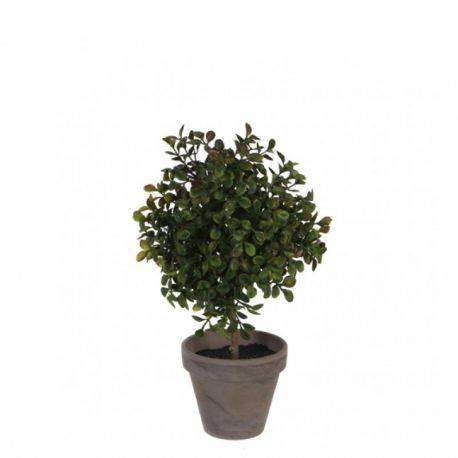 Planta decor Boxwood Ball H27 D16