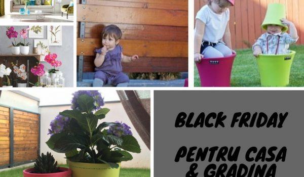 oferte black friday pentru casa si gradina